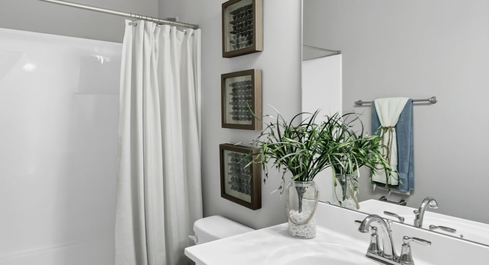 Bathroom in Imperial Home