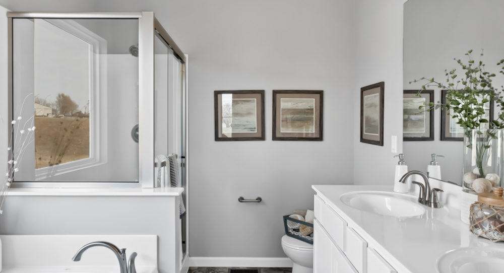 Owner's Bath with Separate Tub and Shower