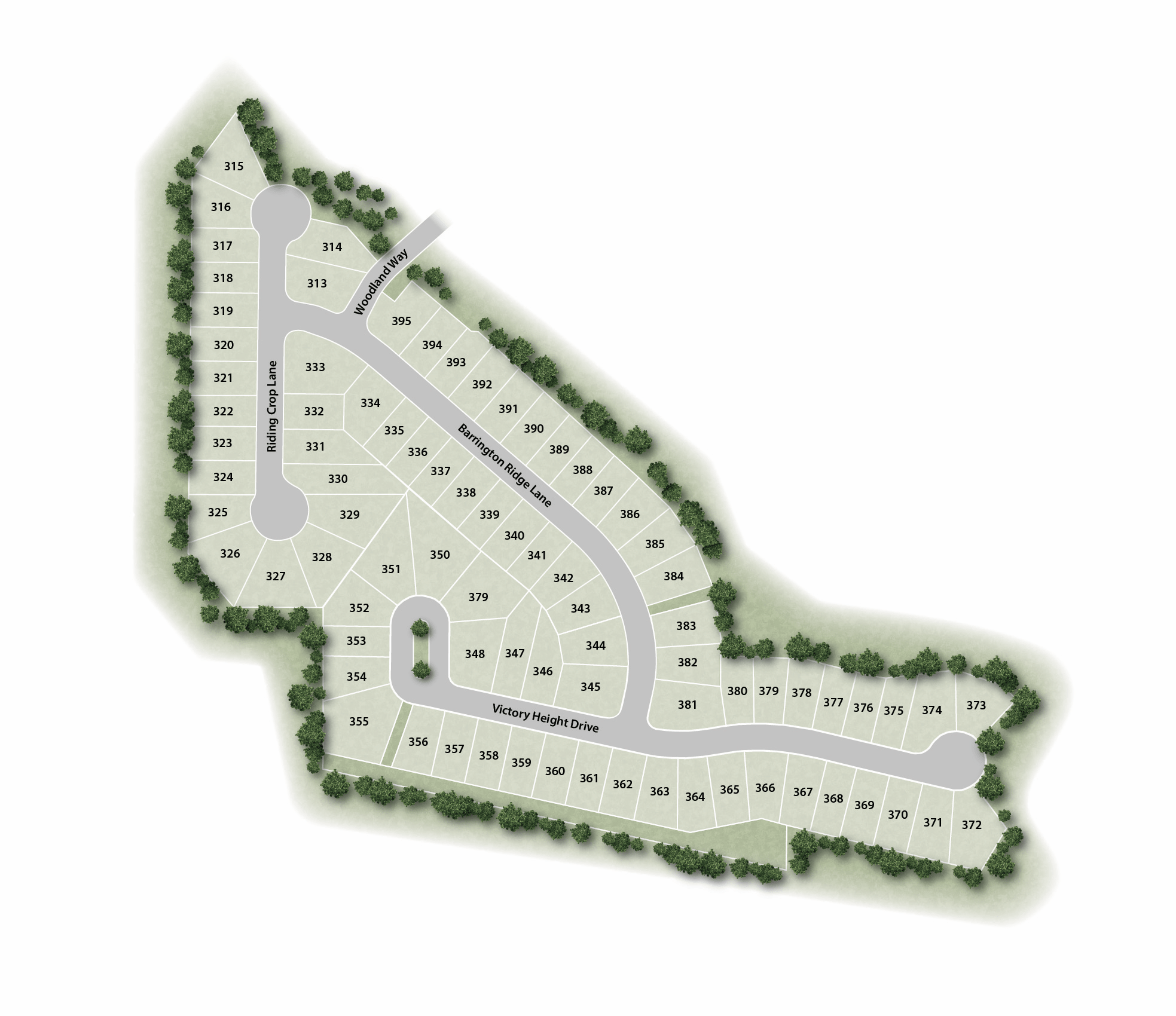 Phase 2 site map from Rolwes Company.